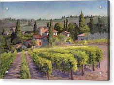 Chianti Vineyard Acrylic Print