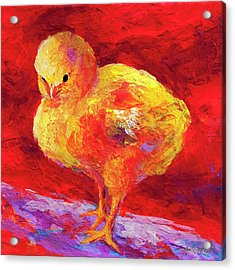 Chic Flic Vii Acrylic Print by Marion Rose