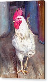 Chic Rooster Acrylic Print