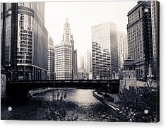 Chicago River Skyline Acrylic Print by Paul Velgos