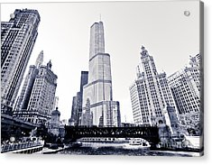 Chicago Trump Tower And Wrigley Building Acrylic Print by Paul Velgos