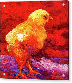 Chicflic Vi Acrylic Print