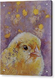 Chick Acrylic Print by Michael Creese