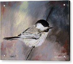 Chickadee Acrylic Print by Cathy Weaver