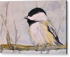 Chickadee Dee Dee Acrylic Print