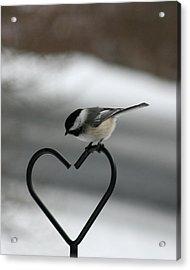 Chickadee On Heart Acrylic Print by George Jones