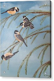 Chickadee Party Acrylic Print