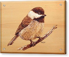 Acrylic Print featuring the pyrography Chickadee by Ron Haist