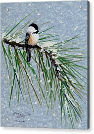 Chickadee Set 8 - Bird 1 - Snow Chickadees Acrylic Print