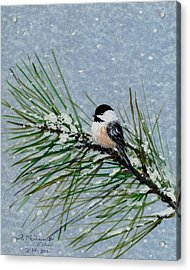 Chickadee Set 8 - Bird 2 - Snow Chickadees Acrylic Print