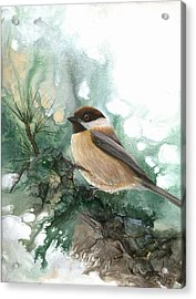 Acrylic Print featuring the painting Chickadee by Sherry Shipley