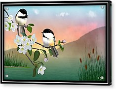 Chickadees And Apple Blossoms Acrylic Print