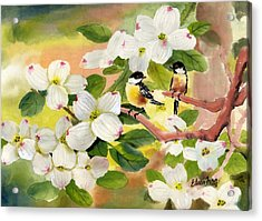 Chickadees In The Dogwood Tree Acrylic Print by Eileen  Fong