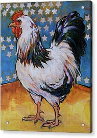Chicken And Stars Acrylic Print by Tracie Thompson