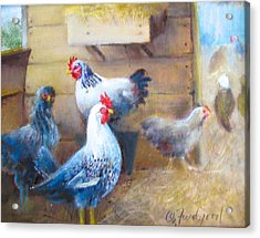Acrylic Print featuring the painting Chickens All Cooped Up by Oz Freedgood