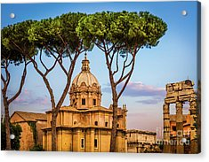 The Pines Of Rome Acrylic Print by Inge Johnsson
