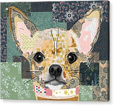Chihuahua Collage Acrylic Print by Claudia Schoen