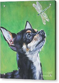 Chihuahua With Dragonfly Acrylic Print