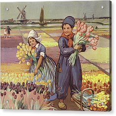 Children Picking Tulips In Holland Acrylic Print