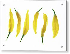 Chillies Lined Up II Acrylic Print