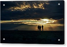 Acrylic Print featuring the photograph Chilling In The Desert by Peter Thoeny