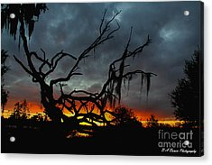 Chilling Sunset Acrylic Print