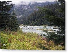 Chillkoot River 3 Acrylic Print