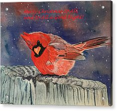 Chilly Bird Christmas Card Acrylic Print