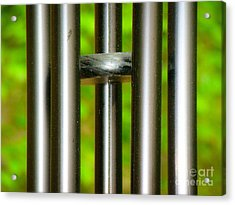 Acrylic Print featuring the photograph Chiming In by Rand Herron