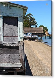 China Camp In Marin Ca - Vertical Acrylic Print by Wingsdomain Art and Photography