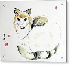 China Cat Acrylic Print