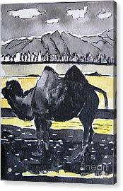 China Silk Road Acrylic Print by Lesley Giles