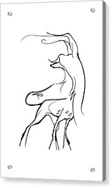 Chinese Crested Gesture Sketch Acrylic Print