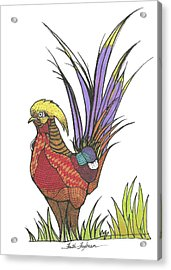 Chinese Golden Pheasant Acrylic Print