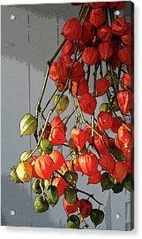 Chinese Lanterns Acrylic Print