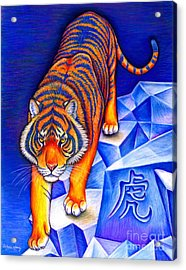 Chinese Zodiac - Year Of The Tiger Acrylic Print