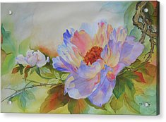 Chinoiserie Acrylic Print by H S Craig