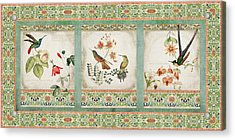Triptych - Chinoiserie Vintage Hummingbirds N Flowers Acrylic Print by Audrey Jeanne Roberts