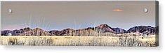 Chiracahuas Panorama Acrylic Print by Sharon Broucek