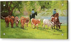 Chisholm Trail Texas Longhorn Cattle Drive Oil Painting By Kmcelwaine Acrylic Print
