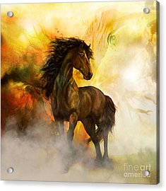 Chitto Black Spirit Horse Acrylic Print by Shanina Conway
