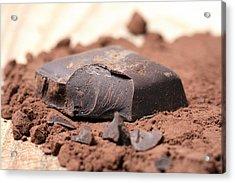Chocolate Acrylic Print by Frank Tschakert