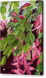 Acrylic Print featuring the painting Christmas Cactus by Lynne Reichhart