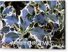 Christmas Card 2 - 2011 Acrylic Print by Rod Ismay