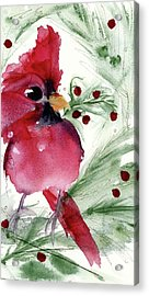 Acrylic Print featuring the painting Christmas Cardinal by Dawn Derman