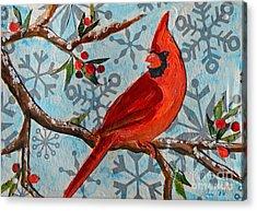 Christmas Cardinal Acrylic Print by Li Newton