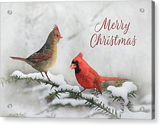 Christmas Cardinals Acrylic Print by Lori Deiter