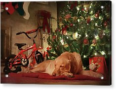 Acrylic Print featuring the photograph Christmas Eve by Lori Deiter