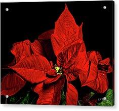 Christmas Fire Acrylic Print