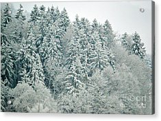 Acrylic Print featuring the photograph Christmas Forest - Winter In Switzerland by Susanne Van Hulst